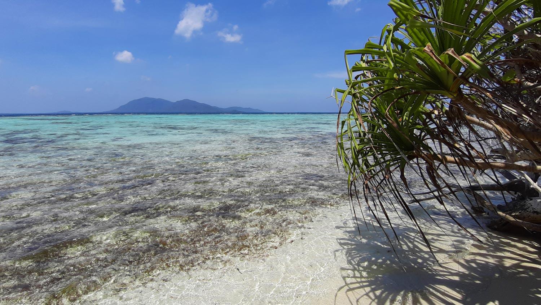 Karimunjawa – Mooiste eiland van Java Indonesië