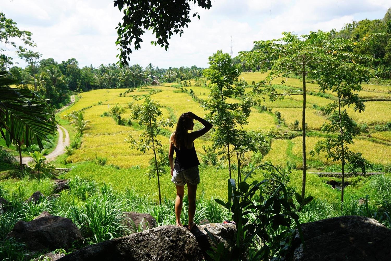 Reisroute Lombok Indonesië: voor 2 weken