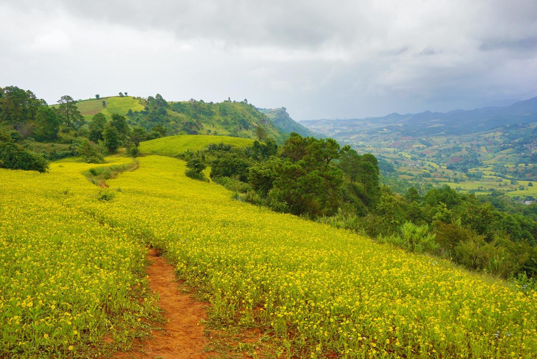 Trekking Kalaw naar Inle – 3 daagse trekking Myanmar