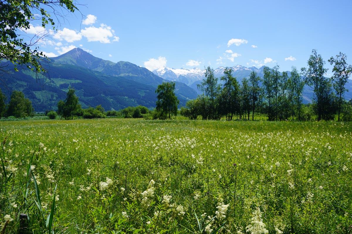 Roadtrip Oostenrijk in 1 week + handige tips!